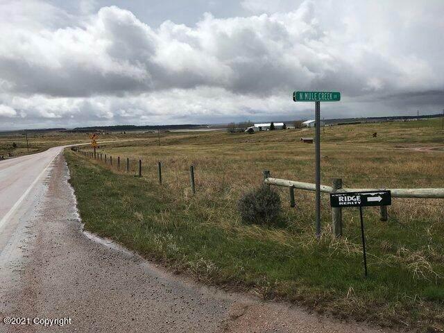 4 N Mule Creek Dr - Photo 1