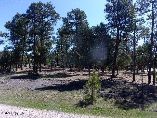 32 Timber Meadows Dr, Pine Haven, WY 82721 (MLS #21-685) :: The Wernsmann Team | BHHS Preferred Real Estate Group