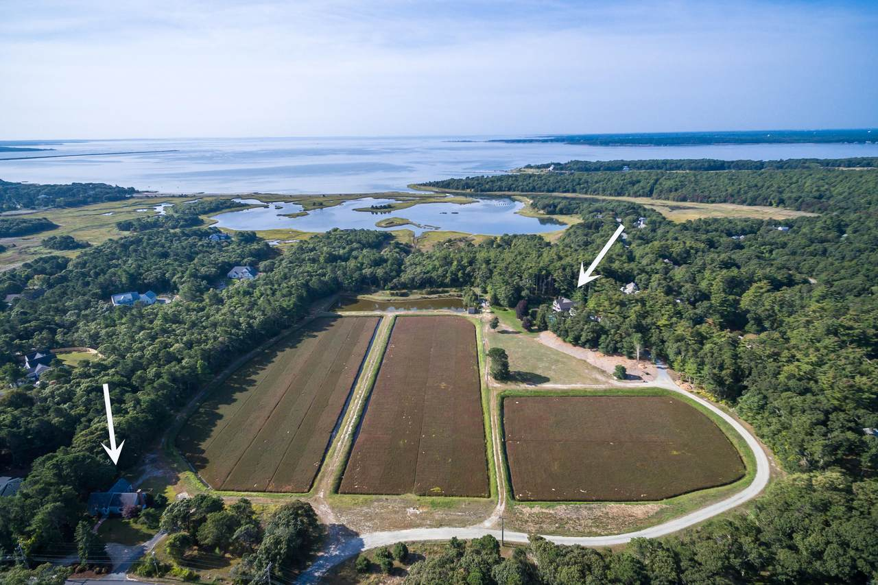 155 &157 Great Neck Road - Photo 1