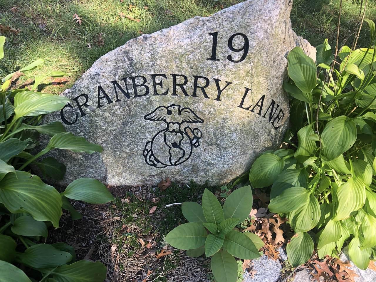 19 Cranberry Lane - Photo 1