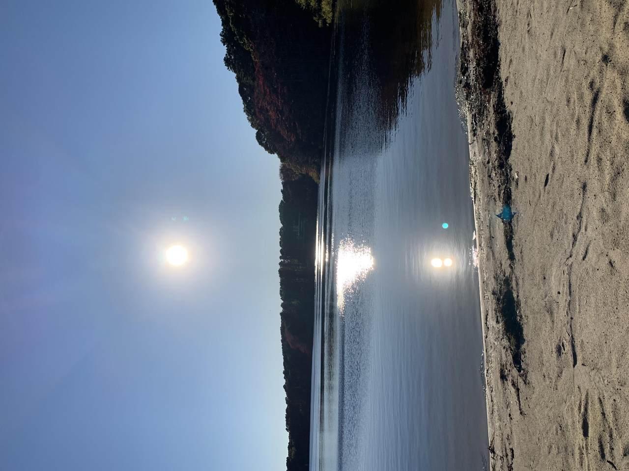 0 Blueberry Pond Drive - Photo 1
