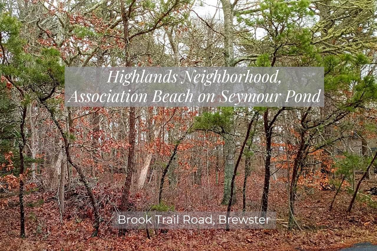0 Brook Trail Road - Photo 1