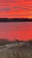 98,100,100 A Oyster Pond Furlong - Photo 36