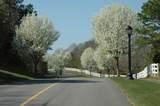 56 Saddleback Lane - Photo 50