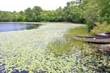 45 Elbow Pond Drive - Photo 33