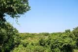 23 Dunes View Road - Photo 5