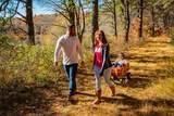95 White Clover Trail - Photo 6