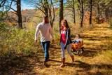 88 White Clover Trail - Photo 12