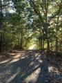 0 Blueberry Pond Drive - Photo 5