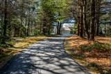 21 Pleasant Pines Avenue - Photo 3