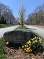 18 Oriole Lane - Photo 2