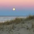 10 Seashore Park Drive - Photo 19