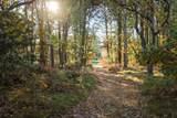 271 Pineleigh Path - Photo 3