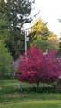 241A Old Taunton Avenue - Photo 8
