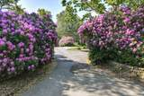 121 Beech Leaf Island Road - Photo 37