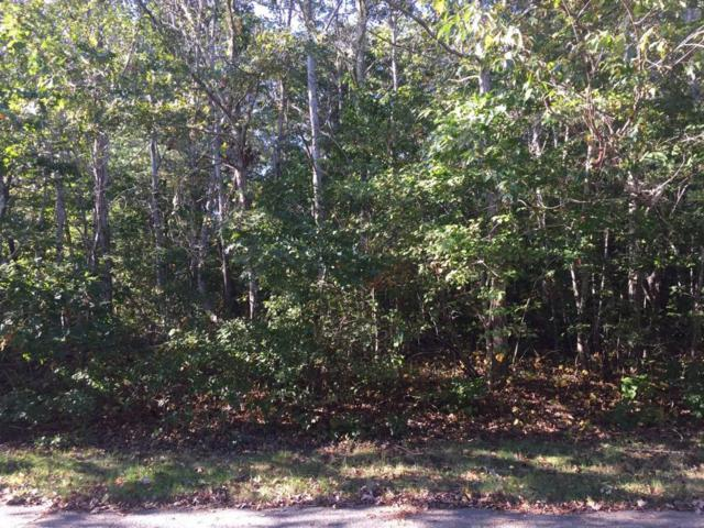 0 Rivers End Road, Teaticket, MA 02536 (MLS #21716559) :: Rand Atlantic, Inc.