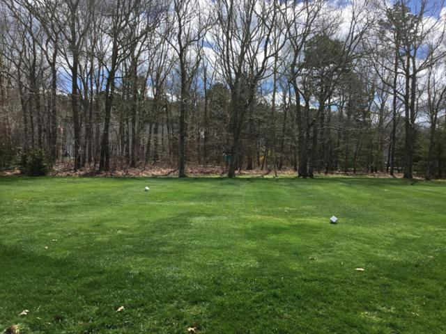 65 Snead Drive, Mashpee, MA 02649 (MLS #21802880) :: ALANTE Real Estate