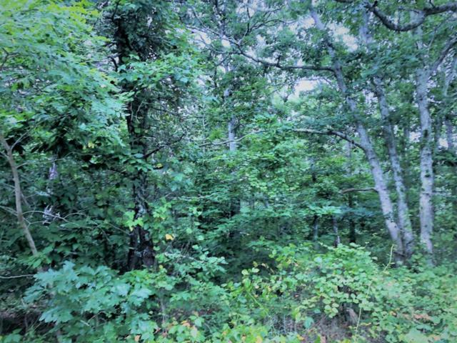 Lot 27 Greenland Pond Road, Brewster, MA 02631 (MLS #21805707) :: Bayside Realty Consultants