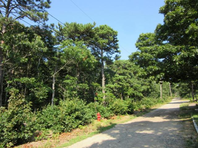 55 Fairview Avenue, Eastham, MA 02642 (MLS #21806007) :: Bayside Realty Consultants
