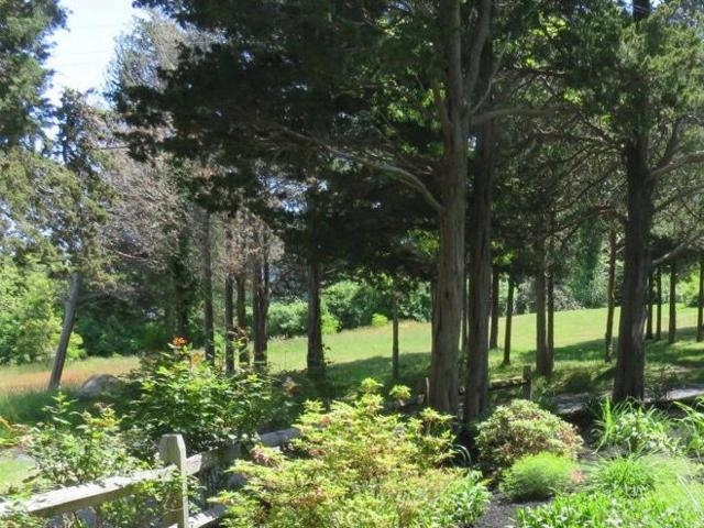 15 Seaview Road, Orleans, MA 02653 (MLS #21900871) :: Bayside Realty Consultants