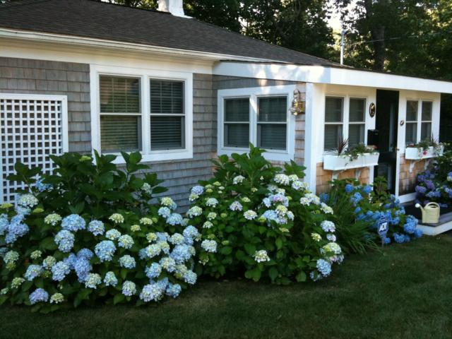 16 Second Avenue Unit 2, Osterville, MA 02655 (MLS #21901848) :: Bayside Realty Consultants