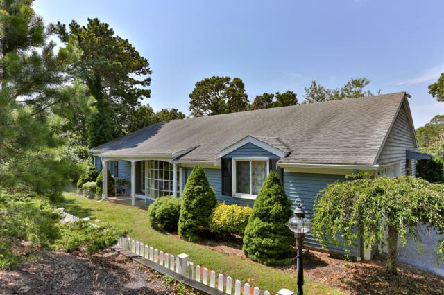 323 Riverview Drive, Chatham, MA 02633 (MLS #21905749) :: Kinlin Grover Real Estate