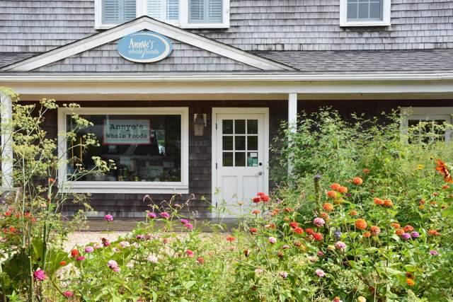 14 Amelia Drive #1, Nantucket, MA 02554 (MLS #22000096) :: EXIT Cape Realty