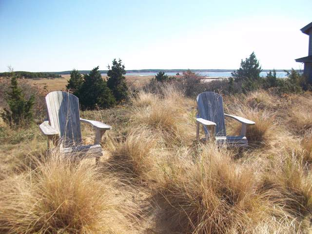41-43 9Th Street, Wellfleet, MA 02667 (MLS #22000336) :: Kinlin Grover Real Estate