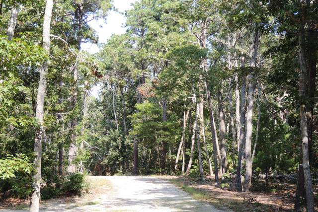 3 Old Campground, Harwich Port, MA 02646 (MLS #22001011) :: Leighton Realty