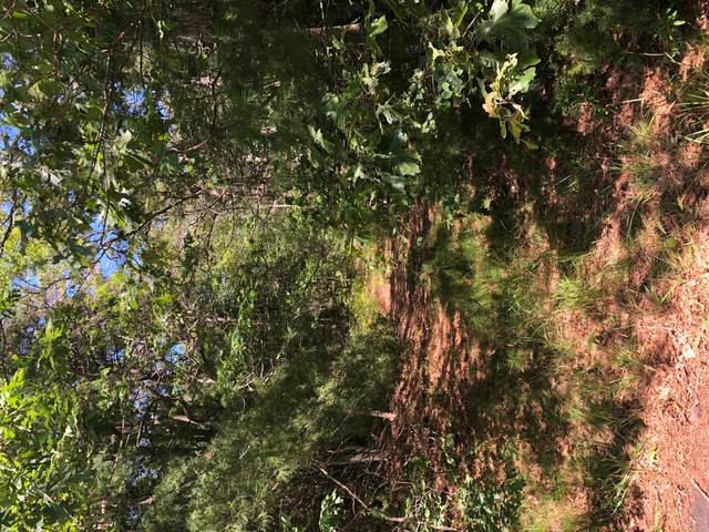 0 Old Stage Rd, West Barnstable, MA 02668 (MLS #22004283) :: Leighton Realty