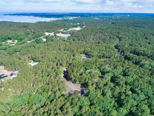 42 Sam Hollow Road, Wellfleet, MA 02667 (MLS #22004378) :: EXIT Cape Realty