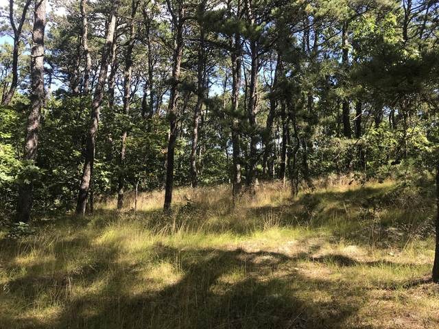 80 Old High Toss Road, Wellfleet, MA 02667 (MLS #22006308) :: Rand Atlantic, Inc.