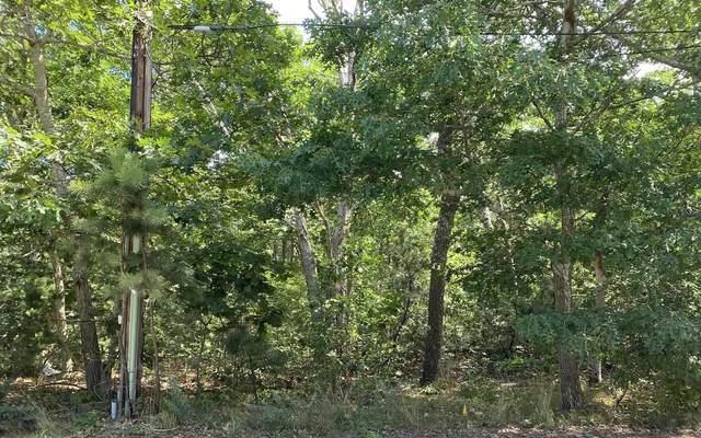 50 Northwood Road, Eastham, MA 02642 (MLS #22100866) :: Rand Atlantic, Inc.