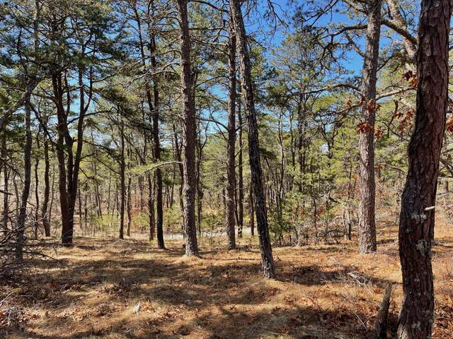 25 Perch Pond Way, Wellfleet, MA 02667 (MLS #22101809) :: Cape Cod and Islands Beach Properties