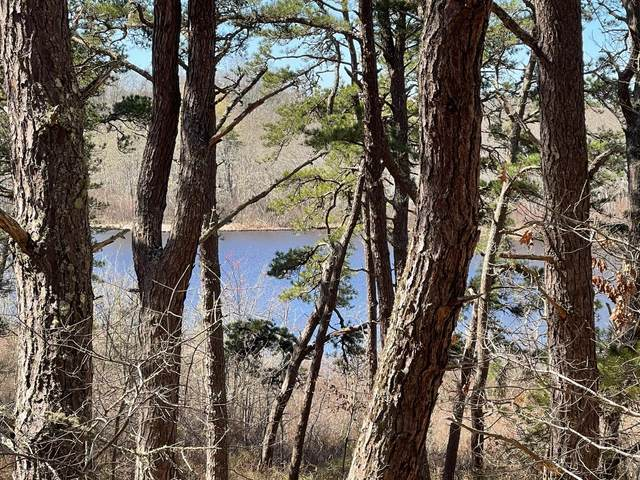 20 Perch Pond Way, Wellfleet, MA 02667 (MLS #22101811) :: Leighton Realty