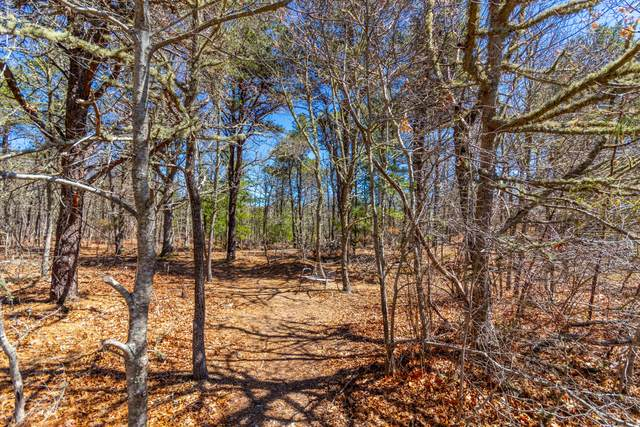 258 John Parker Road, East Falmouth, MA 02536 (MLS #22102371) :: Leighton Realty