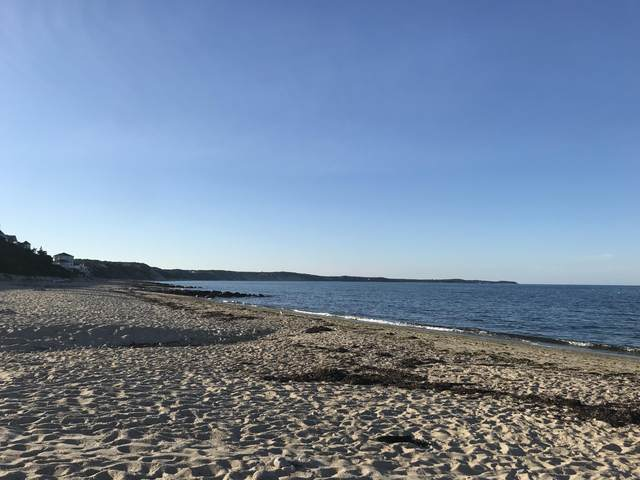 272 Williston Road, Sagamore Beach, MA 02562 (MLS #22102480) :: Rand Atlantic, Inc.
