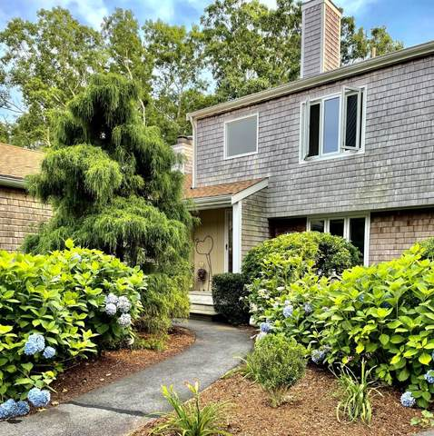 144 Strawberry Meadow, Teaticket, MA 02536 (MLS #22104376) :: EXIT Cape Realty