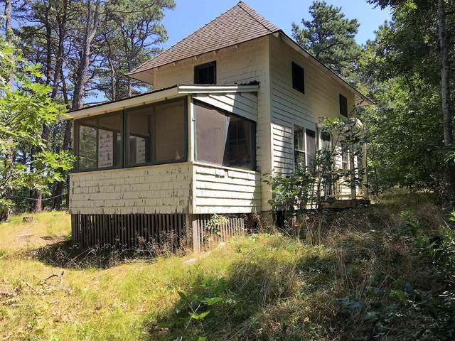 35 Mountain Avenue, Wellfleet, MA 02667 (MLS #22104530) :: Leighton Realty
