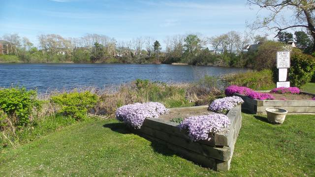24 Betty's Pond Road #9, Hyannis, MA 02601 (MLS #22105725) :: Leighton Realty