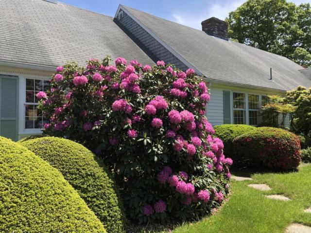 430 Riverview Drive, Chatham, MA 02633 (MLS #21806429) :: Rand Atlantic, Inc.