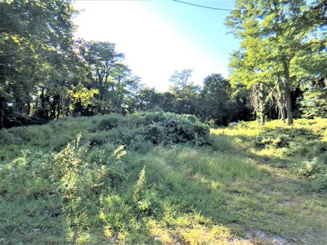 54 Western Eagle Cart Way, Brewster, MA 02631 (MLS #21902875) :: Leighton Realty