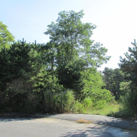 0 Sorrel Circle, East Falmouth, MA 02536 (MLS #21508683) :: Kinlin Grover Real Estate