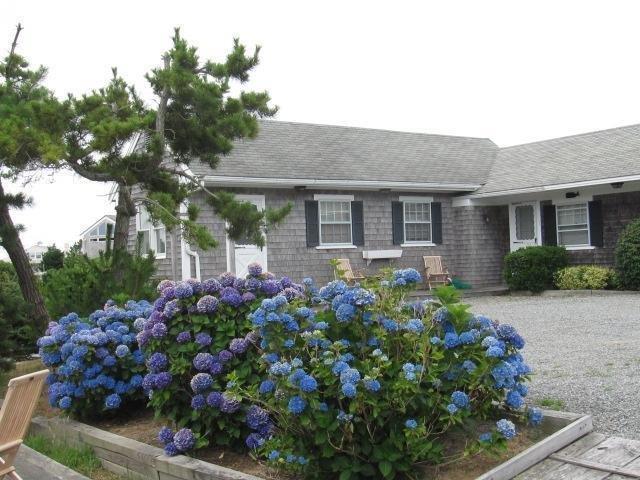 148 Shore Road #5, Truro, MA 02666 (MLS #21803200) :: ALANTE Real Estate