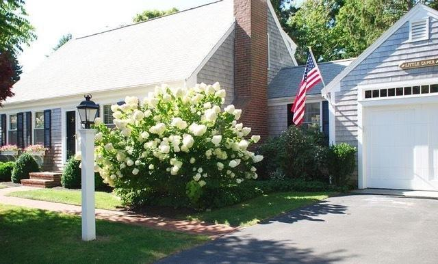 17 Palmer Drive, Chatham, MA 02633 (MLS #21805941) :: Bayside Realty Consultants