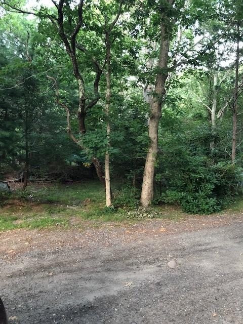 10 Putting Green Circle, East Sandwich, MA 02537 (MLS #21905806) :: Kinlin Grover Real Estate