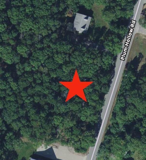 101 Plum Hollow Road, East Falmouth, MA 02536 (MLS #21908307) :: Rand Atlantic, Inc.