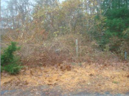 97 Waters Edge Road, Marstons Mills, MA 02648 (MLS #22008355) :: EXIT Cape Realty