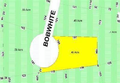 3 Bobwhite Lane - Photo 1