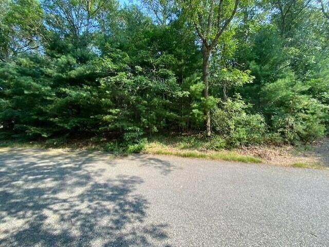 111 Dory Circle, Marstons Mills, MA 02648 (MLS #22104309) :: Kinlin Grover Real Estate